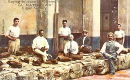Поставщики табака на сигарной фабрике в Гаване